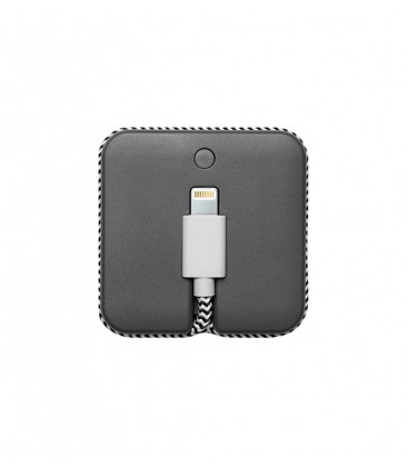Câble de charge + batterie pour Iphone zèbra